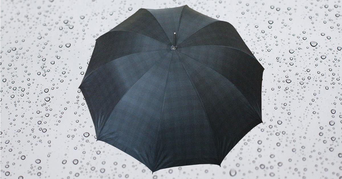 HP187 Herren Langschirm mit Stahlstock, manuelle Öffnung, 10 teilig, ohne Futteral (auf Wunsch kann ein unifarben schwarzes Futteral gefertigt werden)